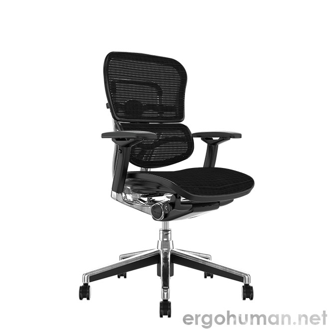 Ergohuman Mesh Office Chair no Head Rest